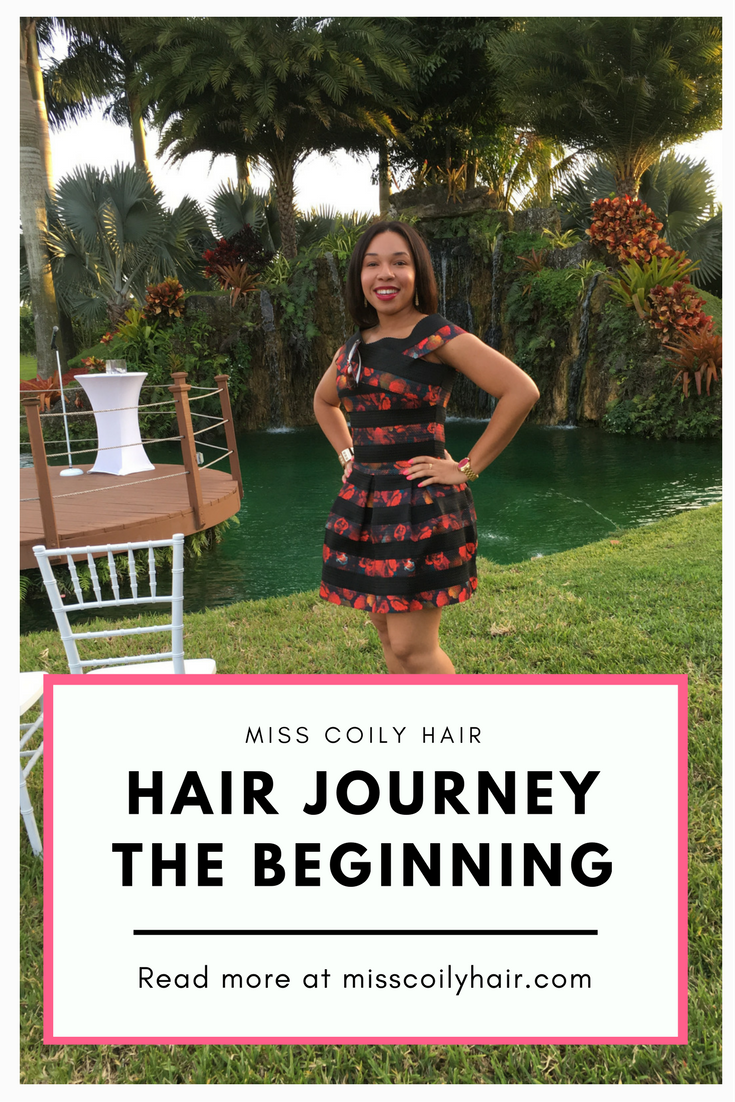 Miss Coily Hair's Hair Journey the beginning. Read more about how I started my hair journey at misscoilyhair.com